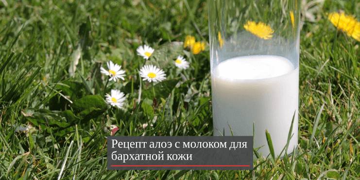 рецепт-маска-с-молоком